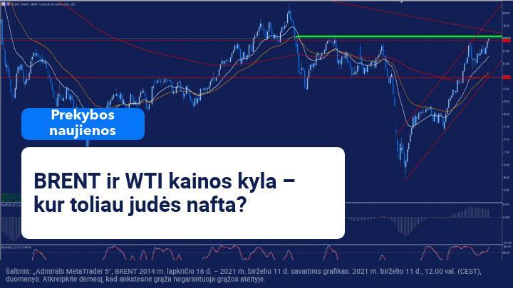Dėl ateities lūkesčių – teigiama OPEC ataskaita