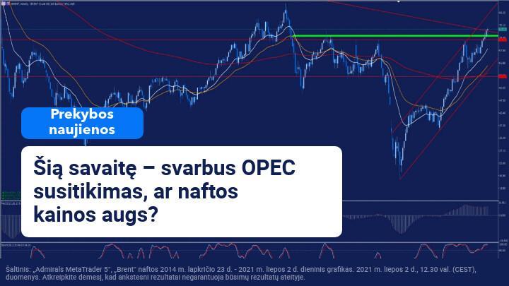 Šios savaitės OPEC susitikimas gali nustatyti kainos tendenciją trumpuoju laikotarpiu