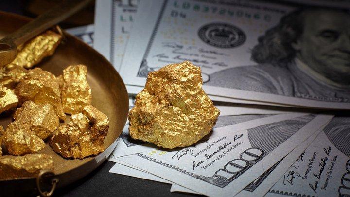 Zlato nová měna v peněžence