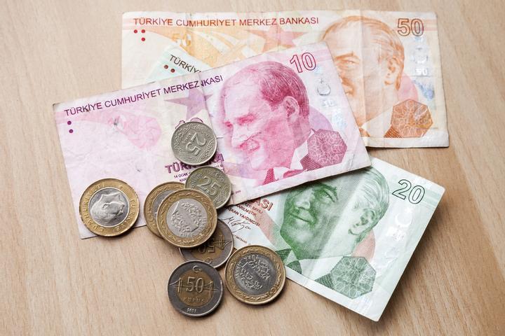 الاستثمار في الليرة التركية