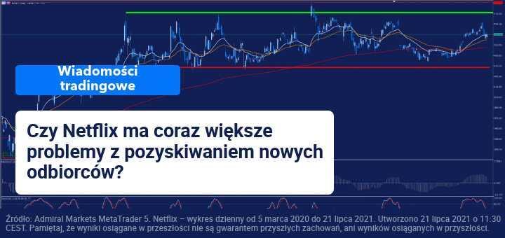 netflix raport