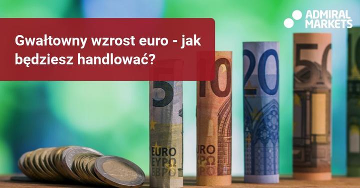 wzrost euro