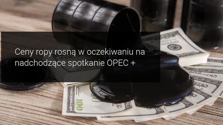 Ropa Opec+
