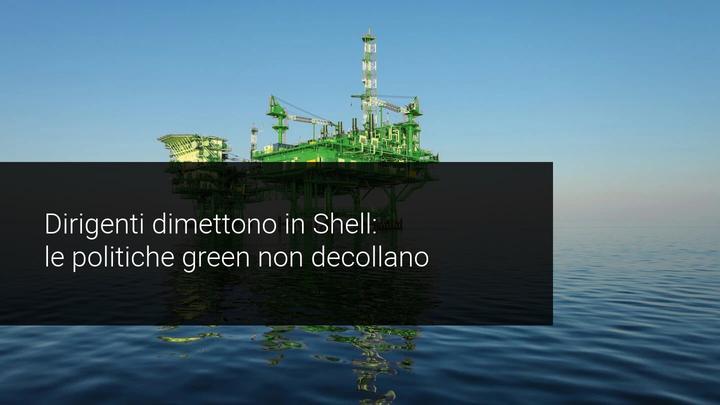 dimissioni shell