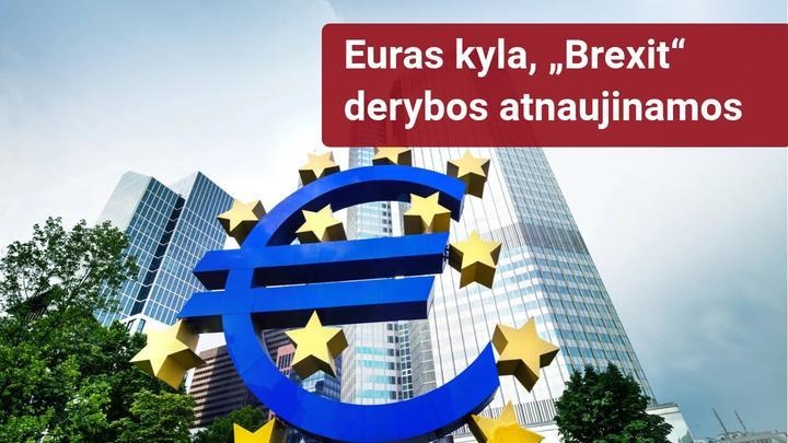 Savaitinė rinkos apžvalga: dėmesio centre ECB, BOC ir Brexit