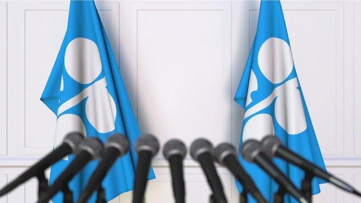 Maržos reikalavimų pakeitimai prieš OPEC posėdį