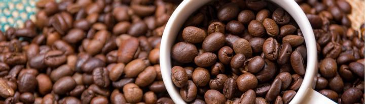 trader café